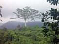 テテバトゥ散歩でジュクットの滝へ。雨対策はしっかりどうぞ。