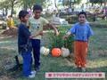 メキシコの死者の日:ツィンツンツァン村の祭礼準備