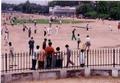 インドの国民的スポーツはクリケットとカバディ。
