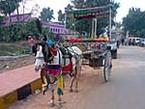 仏教の聖地ラージギルもインド人には楽しいテーマパーク。