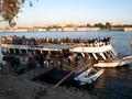 エジプト(ルクソール)の犠牲祭:町の雰囲気が祭りムードに!