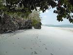 インドネシア マルク州 ケイ・クチル島 パサールパンジャン 北部 引き潮時の海岸