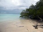 タニンバー・ケイ島 マングローブと白い砂浜
