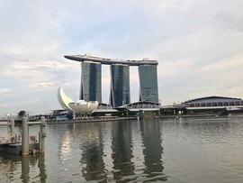 なんでやねん、シンガポール!? [ カヨコ・ケイ ]