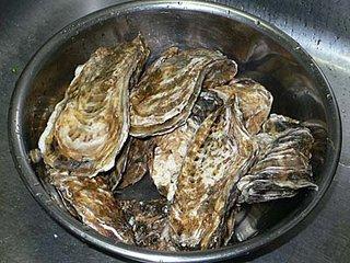復興牡蠣プロジェクトの牡蠣受け取り。産地直送生牡蠣!
