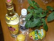 モヒートセット:ハバナクラブ、レモン、ハッカ、ソーダ