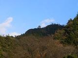 岐阜公園からみた岐阜城