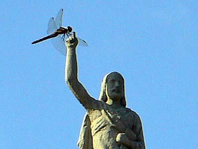 バルセロナ大聖堂の女神にトンボがとまる