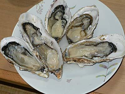 志津川産 復興牡蠣 生牡蠣