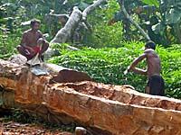 丸木船職人の仕事