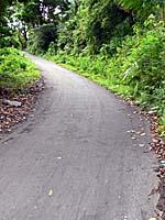 バンダ島を南北に通る道