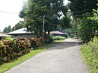 マンコーバツ村