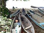 海岸に積んである丸木船