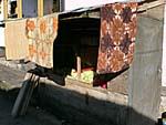キャベツと白菜の屋台
