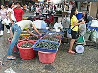 マハーチャイの海鮮市場