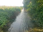 線路に浸水3