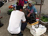 海草を売るおばちゃんと客