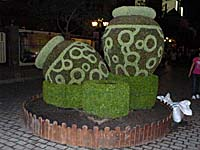 坪の形をした植木