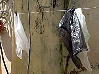 中庭に干されたビニール袋