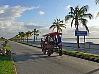 海沿いを走り抜ける馬車