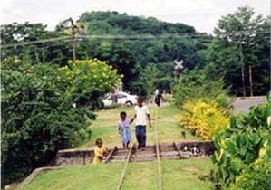 サトウキビ運搬のトロッコ列車