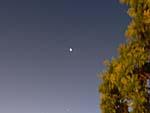 南半球の星空は南十字星がくっきり