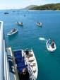 コバンザメのごとく群がるボート