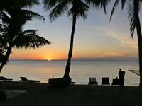 椰子とビーチチェアとサンセット