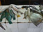 市場に売られている魚:マンボウもいる