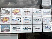 冷凍魚のアウトレット販売。イラスト付き価格表