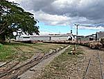 サトウキビが山積みの列車もいくつか放置されている