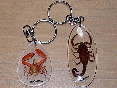蟹とサソリのキーホルダー