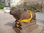 ヒンドゥ寺院のリンガに向かって建つ牛の像