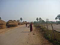 スジャータ村の道