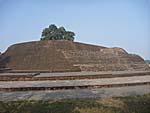 スジャータ村の遺跡
