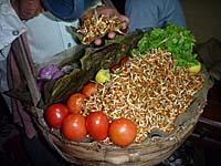 発芽した生のひよこ豆を盛りつけるところ