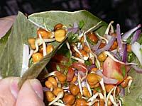 発芽豆と生野菜の和え物2