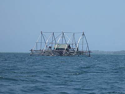 海上に浮かぶ養殖用のボート