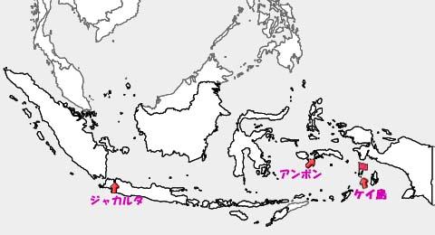 インドネシアの地図 ケイ島の位置関係