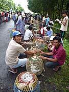 コタラジャの市で取引されるハト