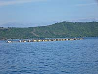 バトゥプティ村沖に浮かぶ養殖棚