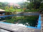 併設のプール