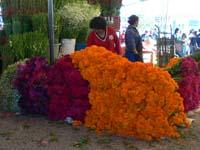 プエブラのメルカドの花屋