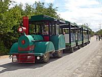 ターミナル発遺跡行きの列車