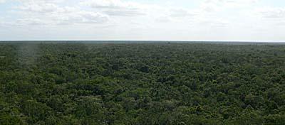 コバ遺跡のピラミッドからの眺め