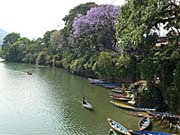 フェワ湖:シバ寺院付近から撮ったショット