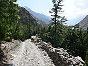 チョコパニ村側の車道