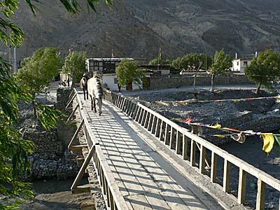 ジョムソン本村に綿橋。馬も自分で渡る。
