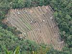 ワイナピチュから見下ろした段々畑