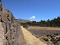 ラクチ遺跡の外壁